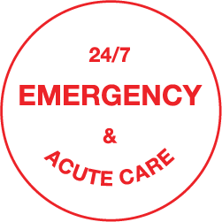 247 emergency.png